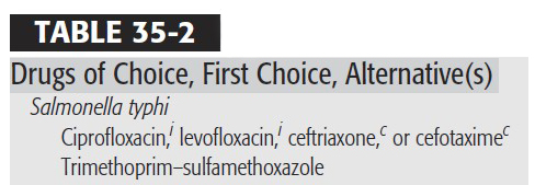obat pilihan tipus