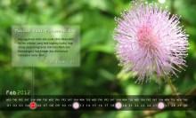 kalender februari 2012