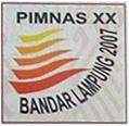 logo pimnas xx 2007