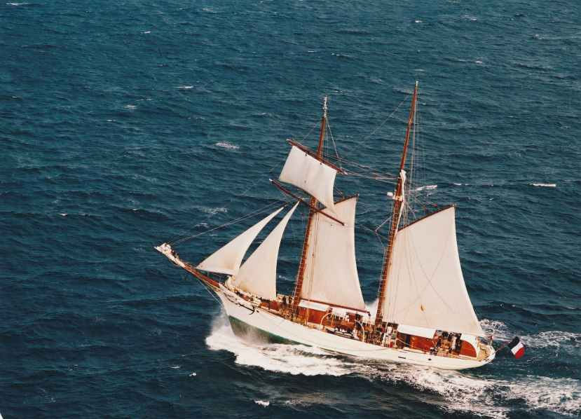 white and brown sail boat on blue sea