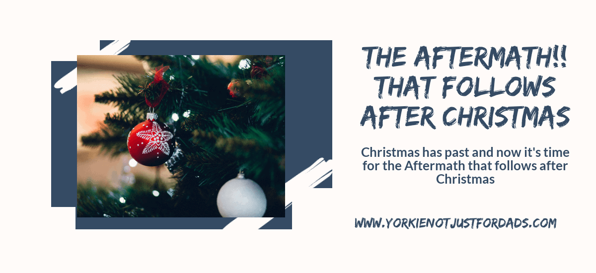 Featured image for the post the aftermath that follows after Christmas