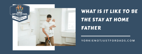 What is it like to be the stay at home father