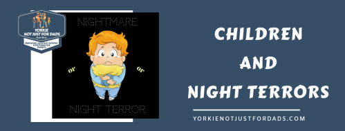 Featured image for the post children and night terrors
