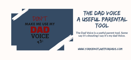 Featured image for the post the dad voice a useful parenting tool