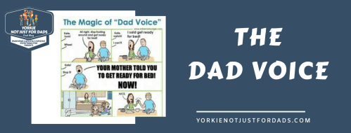 Featured image for the post the dad voice