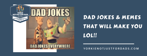 Dad jokes and memes that will make you lol