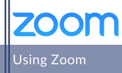 Support to use Zoom