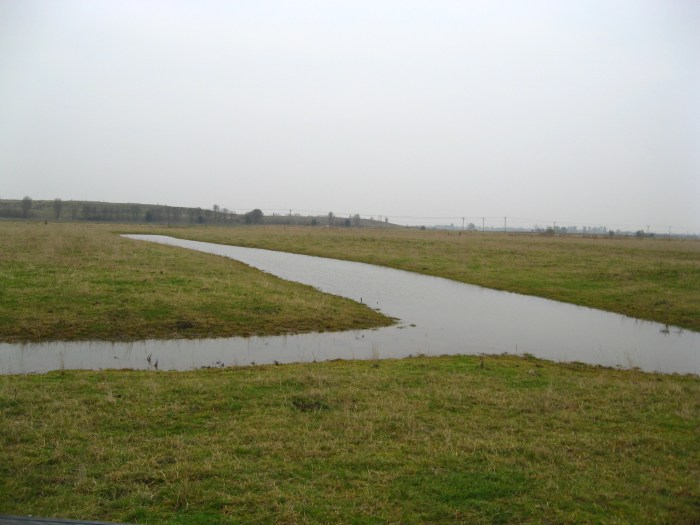 Example of a functioning swale.