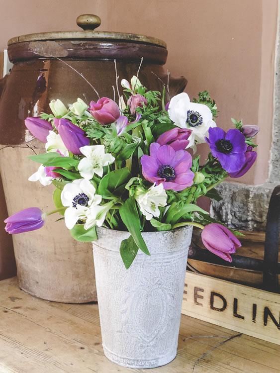 house flowers