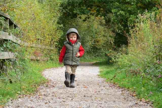 10 magical kid & dog friendly winter walks in Yorkshire