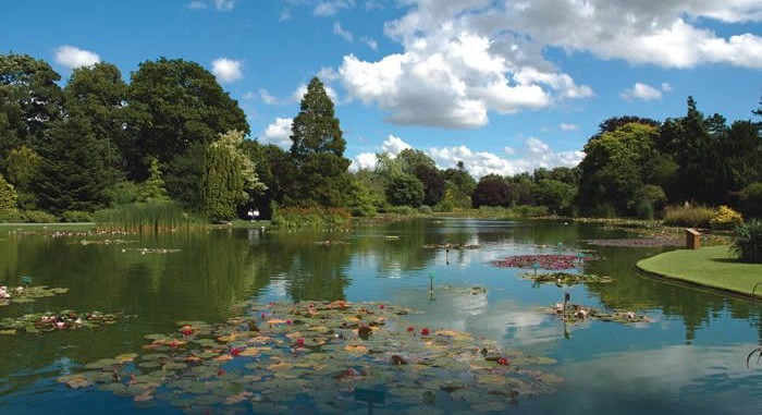 Burnby Hall Gardens, Pocklington