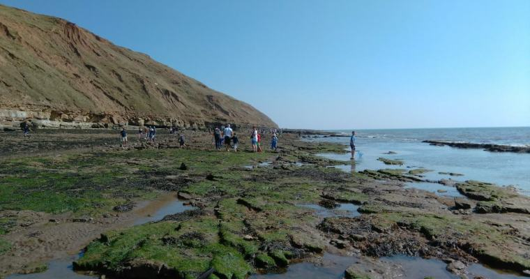 Rockpooling with the Kids on Filey Brigg