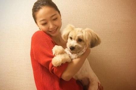 畠山愛理のインスタの愛犬が可愛いけど名前は?犬種も性格やしぐさから予想