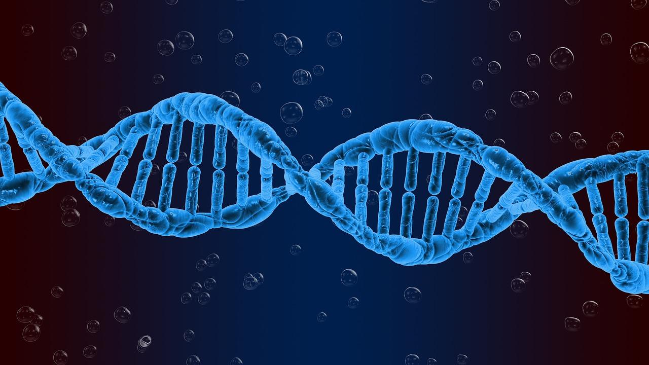 【ゲノム編集技術】想像を遥かに超える!驚きの技術とは?