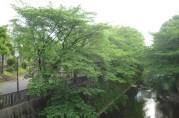 Lycée facing the river walk