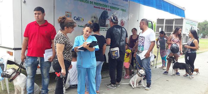 La Secretaría de Salud Pública de Cali realizará jornada registro para animales considerados potencialmente peligrosos