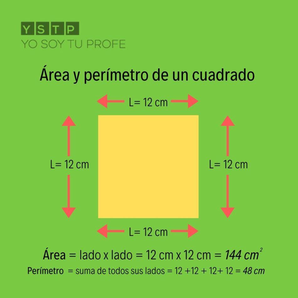área y el perímetro de un cuadrado