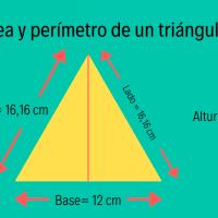 ¿Sabes calcular el área y el perímetro de un triángulo?
