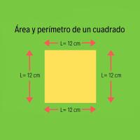 ¿Sabes calcular el área y el perímetro de un cuadrado?