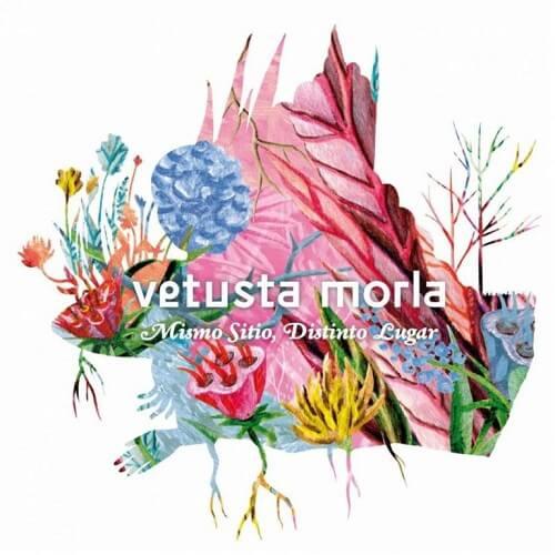 vetusta-mismositio-768x768