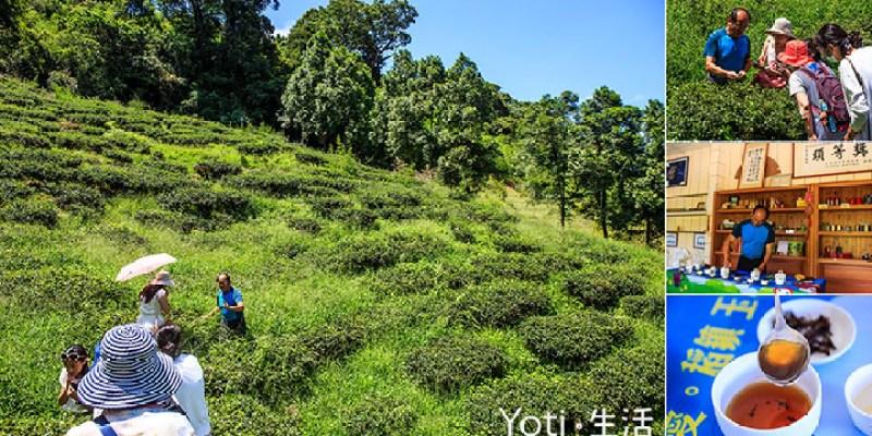 [花蓮玉里赤科山] 吟軒茶坊 | 品茗之餘, 不妨來趟山上農場的茶園導覽體驗吧!