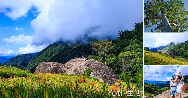 [花蓮玉里赤科山] 千噸石龜與赤柯神木 | 探訪渾然天成的自然景觀秘境, 赤科三景之一