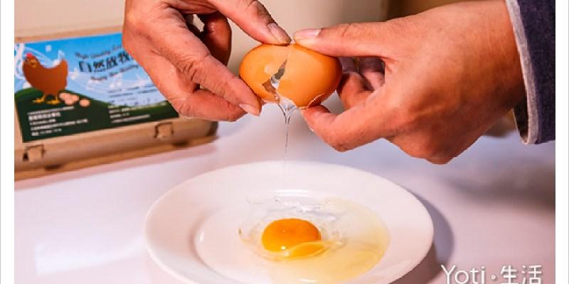 [花蓮壽豐] 大安日照開心農場 | 縱谷放牧蛋, 來自純淨花東縱谷的好雞蛋(體驗邀約)