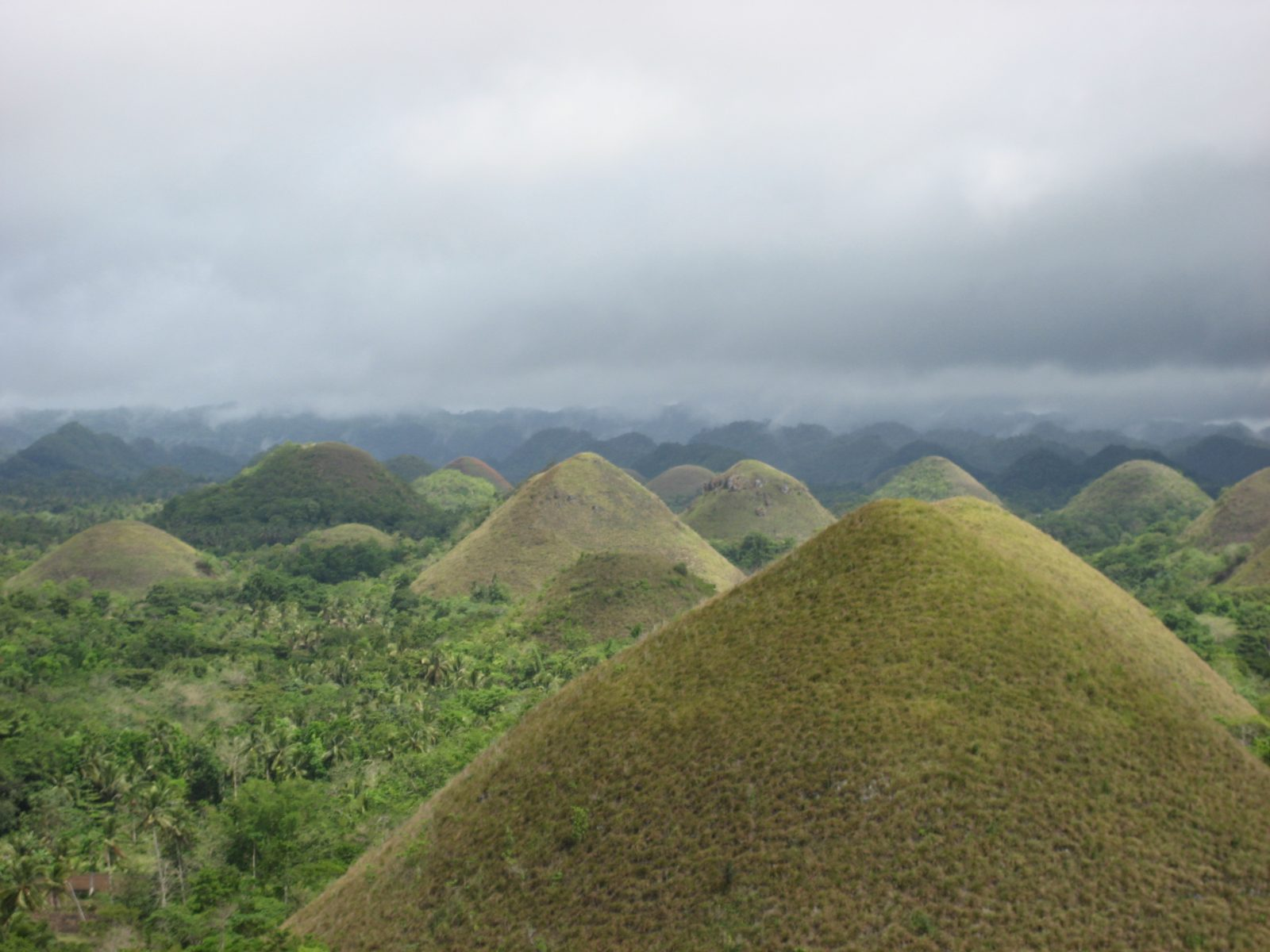 Chocolate Hills of Bohol, Philippines