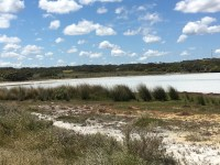 White Lake, Coorong National Park Loop