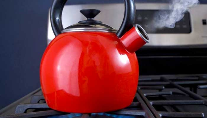 Pigs a teapot