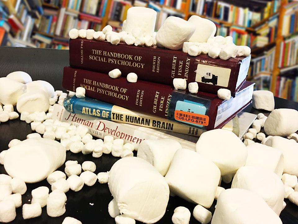 The Marshmallow Replication