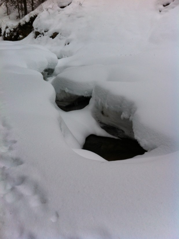 Those Snow Bridges