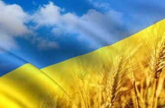 новости Украины,новости России,политика,новости Новороссии,информационный портал,Харьковские новости,обманутые Харьковчане