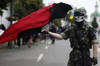 «Правый сектор» и УПА анонсируют поход на Киев после 20 февраля. Об этом на совместной конференции заявил один из членов провода с позывным друг Сенсей.