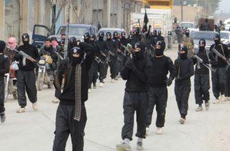 Отряды незаконных вооруженных формирований и террористической группировки «Джабхат ан-Нусра» продолжают нарушать договоренности о прекращении огня в провинциях Латакия