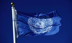 ООН призвала немедленно прекратить Украину обстреливать Донбасс (Видео)