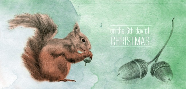 illustration-by-youdesignme_6th-day-of-christmas