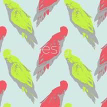 pale-parrots