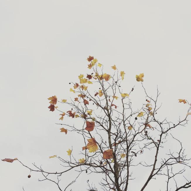 youdesignme_Moods_16-1