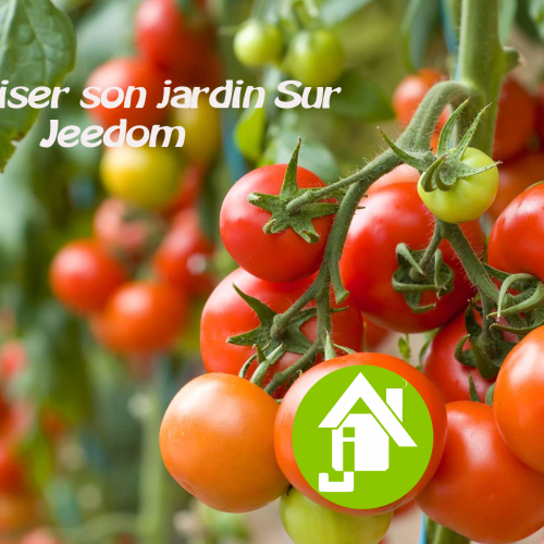 Domotiser son jardin (facilement) sur jeedom