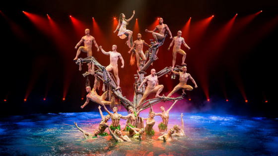 Photo of aerialist act during Le Reve