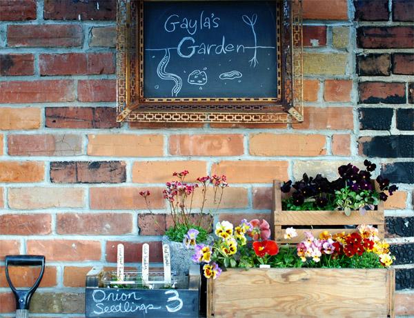 Gayla Trail Urban Rooftop Garden
