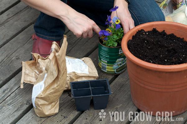 Guide to Choosing Organic Potting Soil Mixes