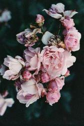 flowers - Flowers - boho chic inspiration via youmademelikeyou.com