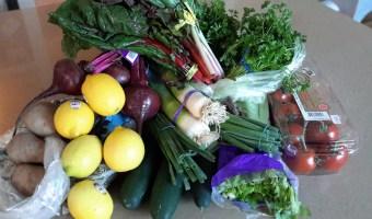 26 Day Detox: Food Elimination