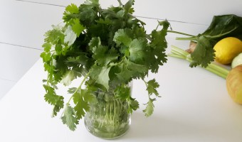 Cilantro: The Benefits, Uses and How To Keep It Fresh