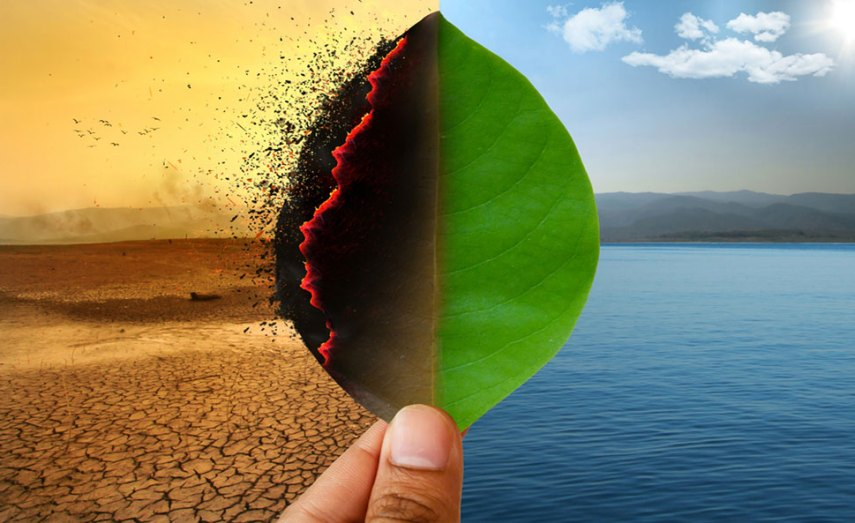 Climate Change: Meaning, Definition, Causes, Examples And ...