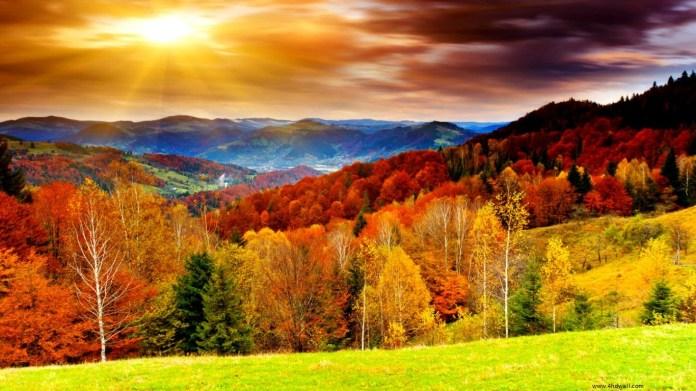 Autumn Nature HD Wallpaper For Laptop