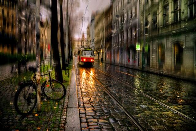 Rain Nature HD Wallpaper For PC