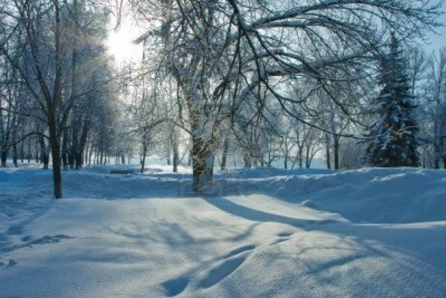 Winter Nature HD Wallpaper Background
